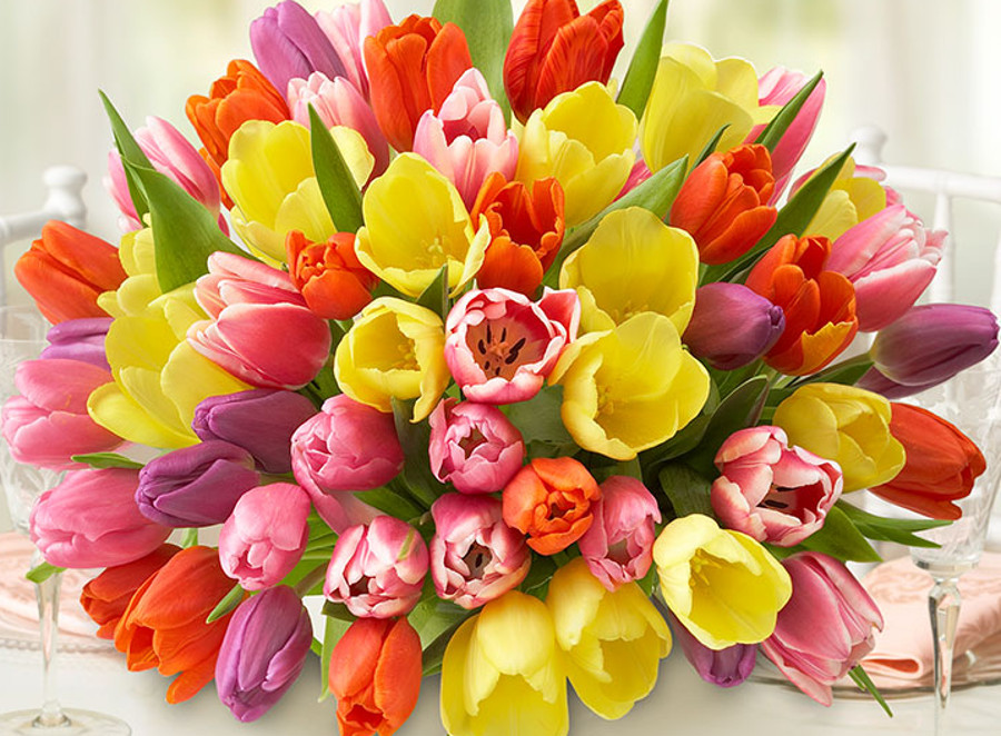 MOST CHEERFUL FLOWERS TO BRIGHTEN SOMEONE'S DAY